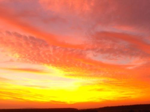 new_zealand_sunset_-_geograph-org-uk_-_275038
