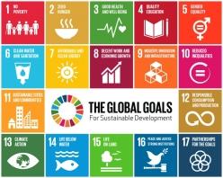 Global Goals SDGs