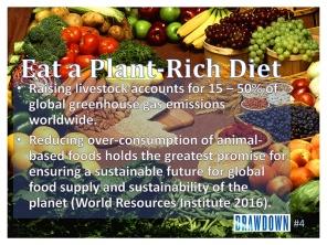 Plant-Rich Diet